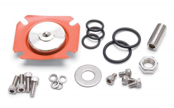 Fuel Pressure Regulator Rebuild Kit, EFI