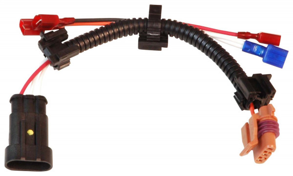 Harness, MSD to Late Model, GMs, '96-on